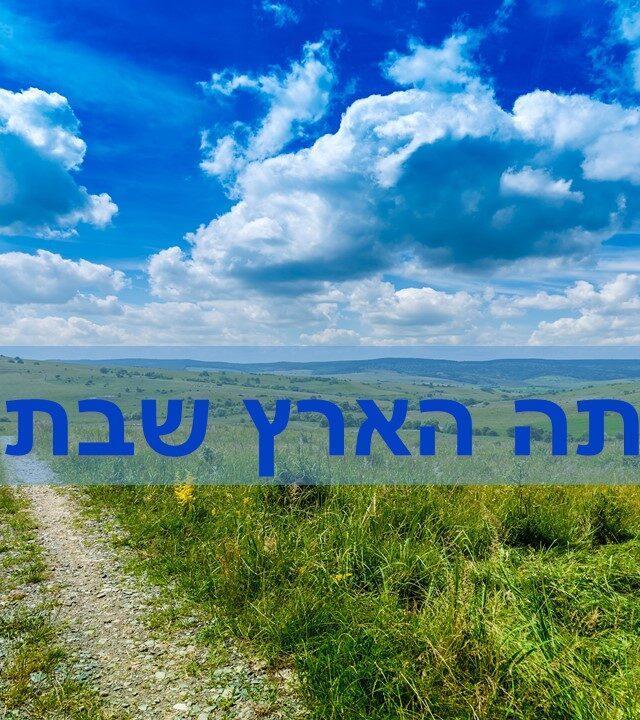 יסודות וגדרי הלכות שמיטה