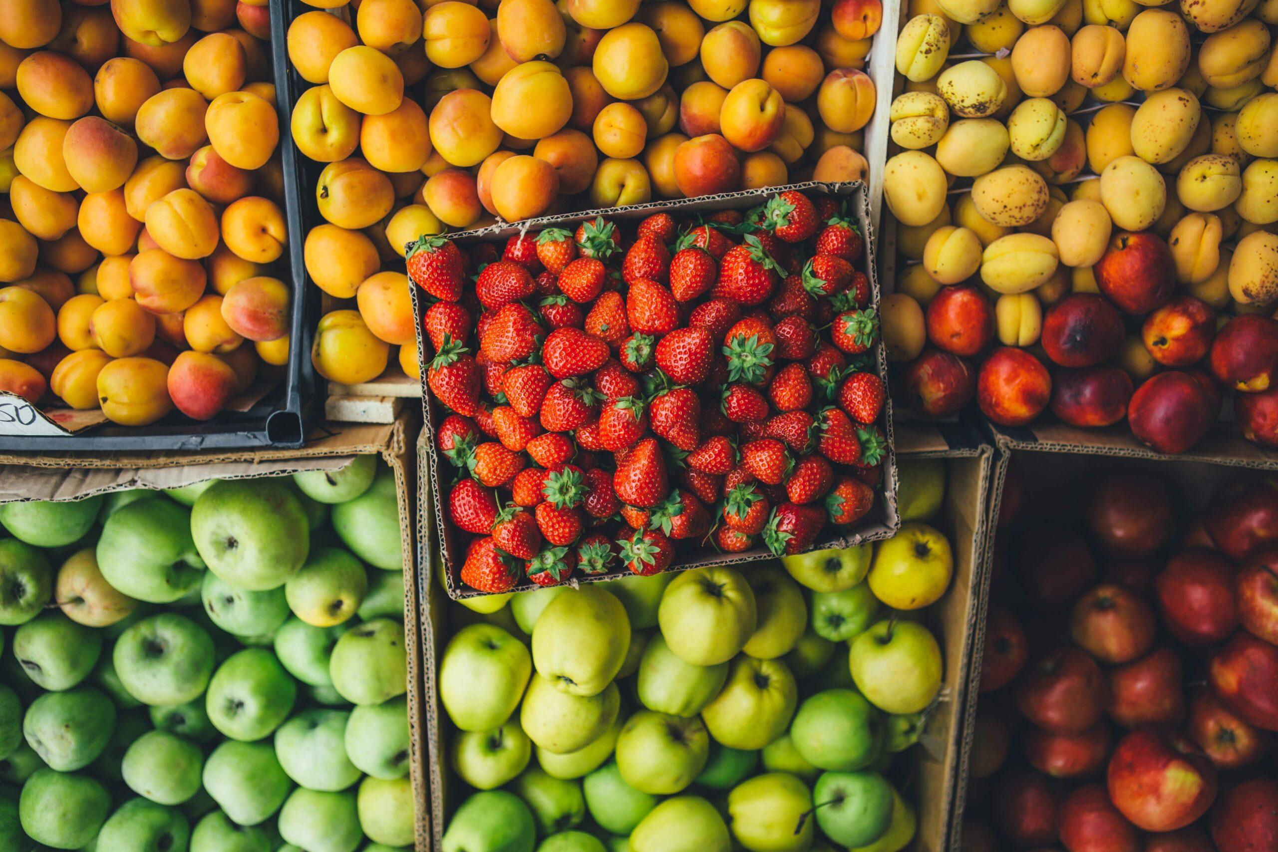 אסור להוציא פירות הקדושים בקדושת שביעית מארץ ישראל לחוצה לארץ.