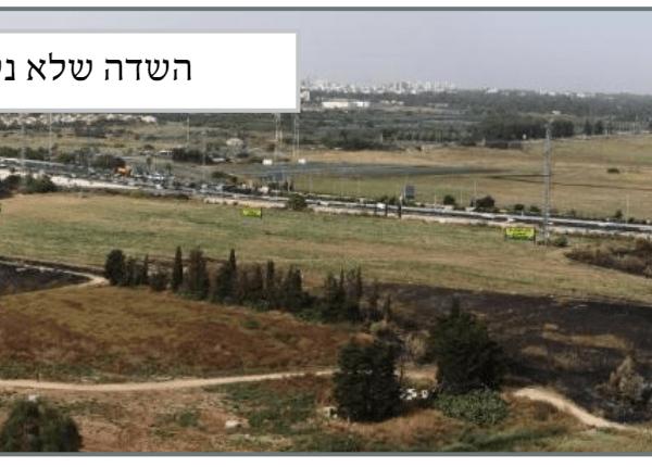 השדה שלא נשרפה -משרתיו אש לוהט