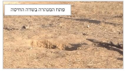 המנהרה שהתגלתה – אחמד, איך גילו אותנו?