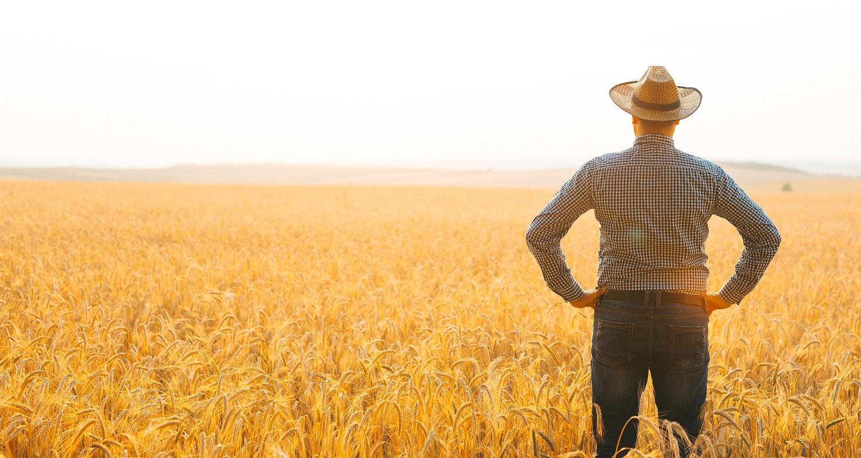 החקלאי שהרוויח