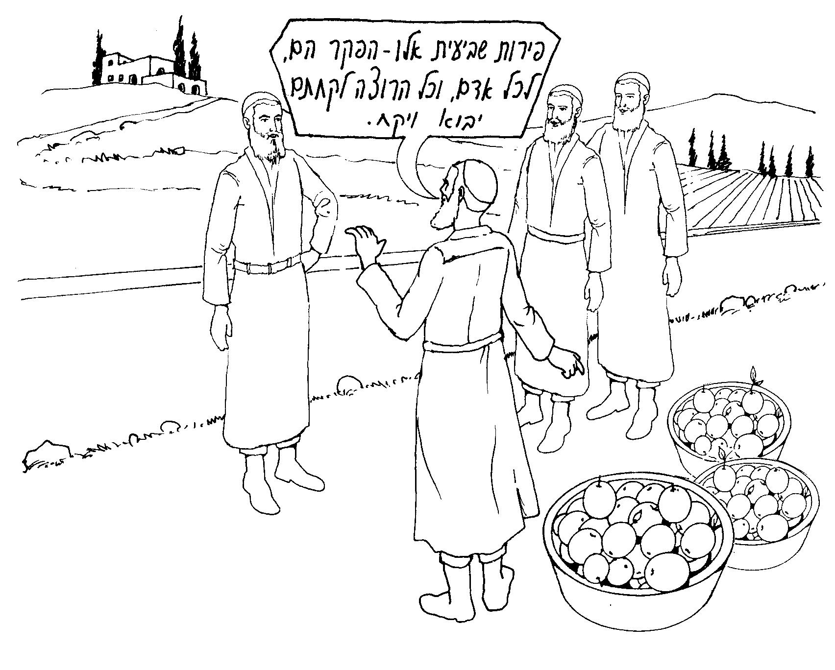 ביעור פירות שביעית על ידי הפקר