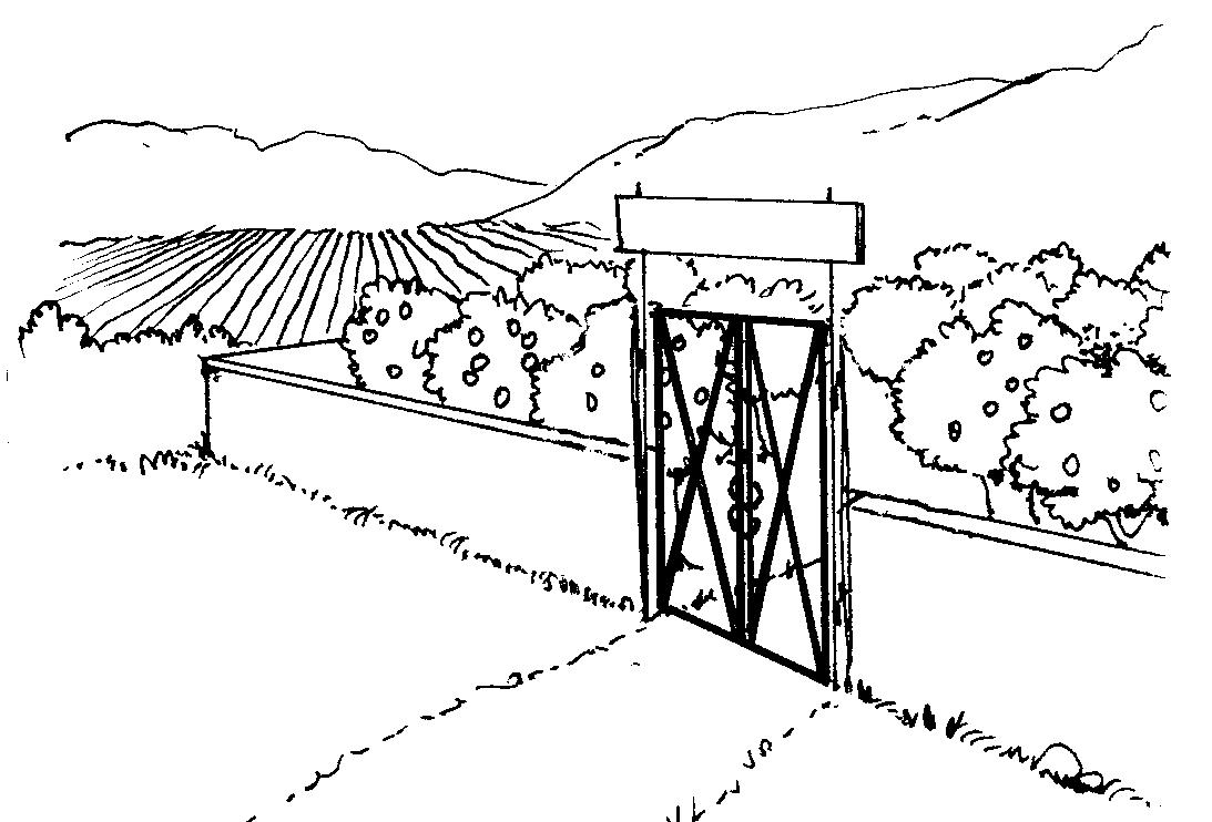 שדה נעול בשמיטה