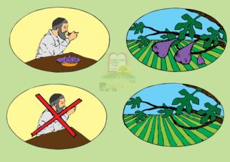 ביעור פירות שביעית