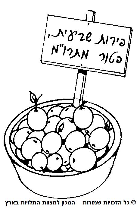 פירות שביעית פטורים ממעשרות