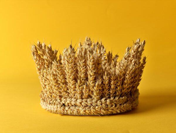 הקהל – כשהמלך ישב על בימת עץ