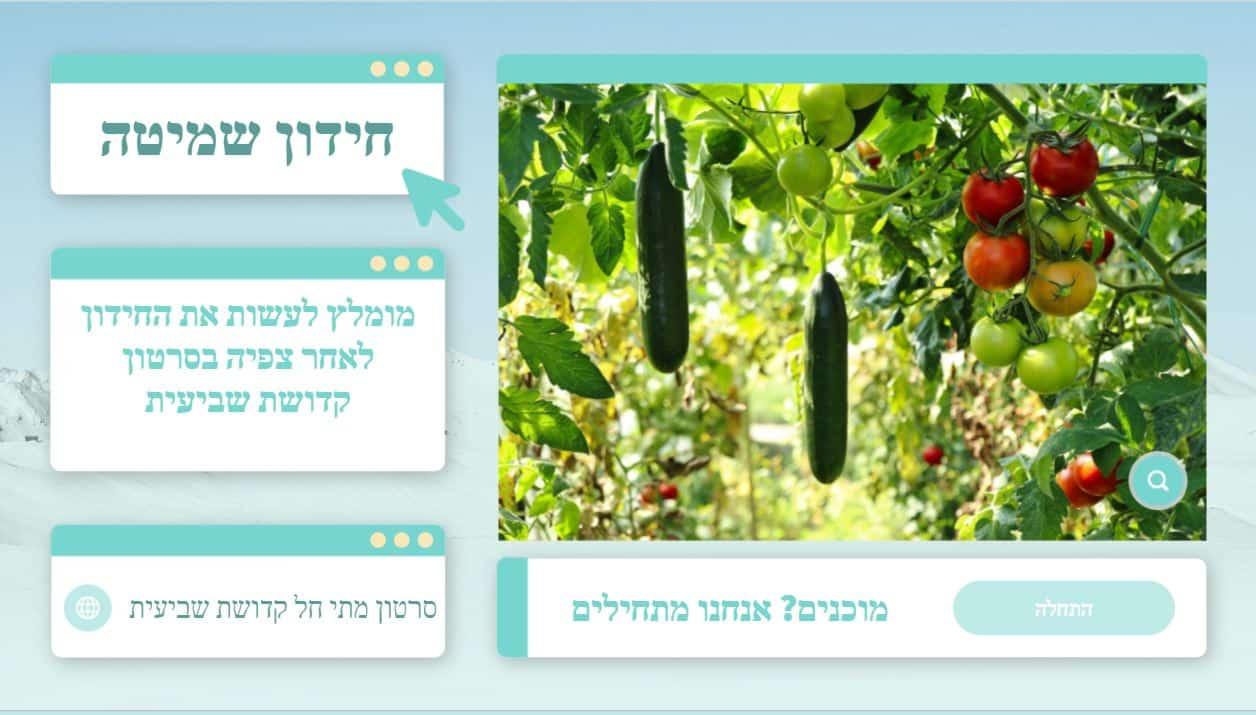 מתי חל קדושת שביעית בפירות וירקות